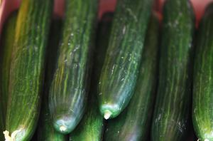 Germany's Federal Institute for Risk Assessment is still warning consumers to avoid all cucumbers, lettuces and raw tomatoes as the outbreak is investigated. Photo: Getty Images