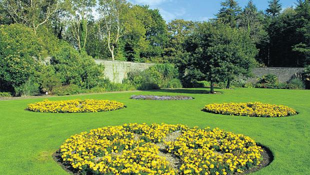 Experience spring at the Vandeleur Walled Gardens, Co Clare