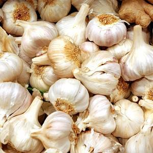 An ingredient in garlic could be used in the fight against food poisoning