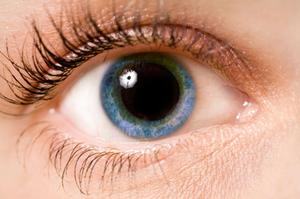 They hope within 10 years to be able to start clinical trials on retina implants. Photo: Thiankstockphotos.com
