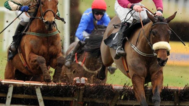 Crash, with Davy Russell up (right), leads Lambro (Paul Townend) over the last on the way to winning the Cashel Maiden Hurdle at Thurles. Photo: Healy Racing