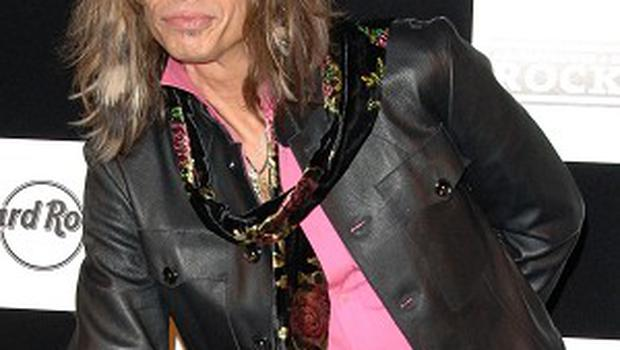 Steven Tyler says his fame has rocketed since taking on a judging role on American Idol