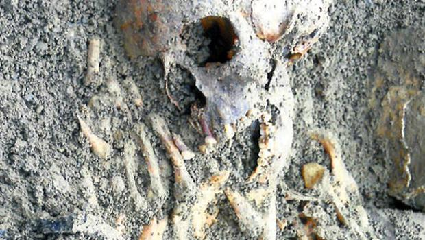 The Bronze Age remains discovered by Pat Tiernan during work on an extension to his home in Co Westmeath