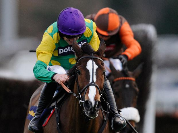Kauto Star: Will work at Wincanton