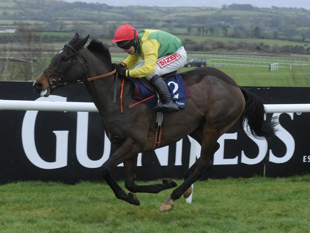 Sizing Europe: Completed Cheltenham preparations