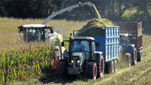 A 46pc recovery in farmer incomes through 2010 helped to keep a floor on land prices through the first half of the year, but continuing difficulties in sourcing finance for farm purchases has undermined the market