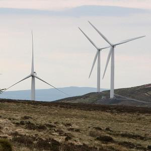 Six wind farms were given six-figure payments to switch off their turbines because the Scottish grid network could not absorb all the energy being produced