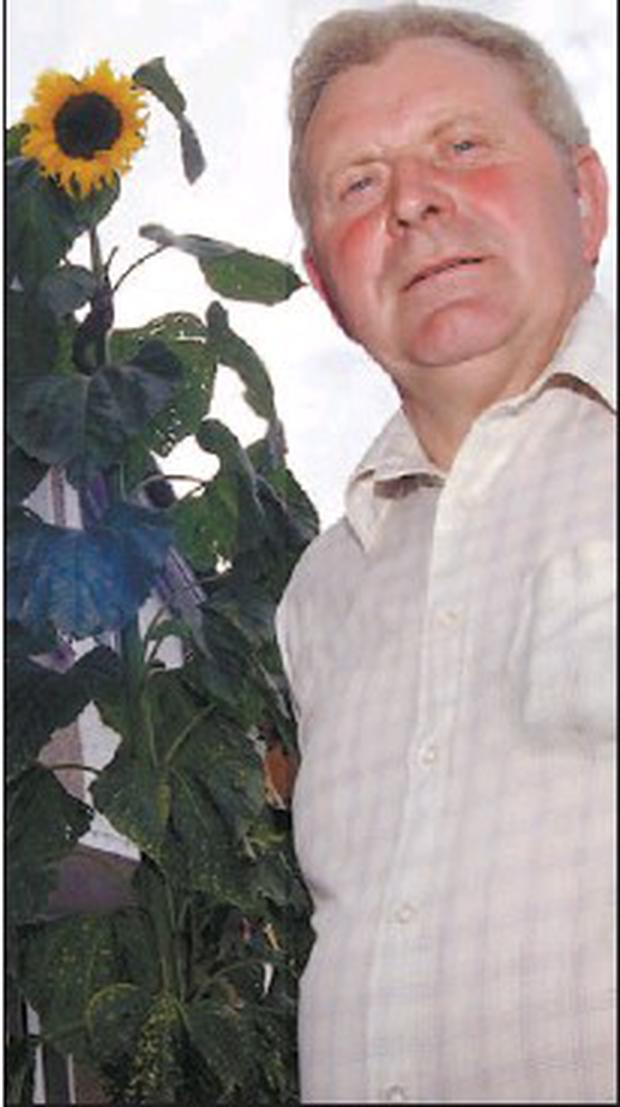 Glin Castle head gardener Thomas Wall been awarded the title of Limerick Man of the Month. Credit: Photo by John Reidy