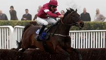 Sir des Champs jumps the last fence and goes on to win the Novices' Chase