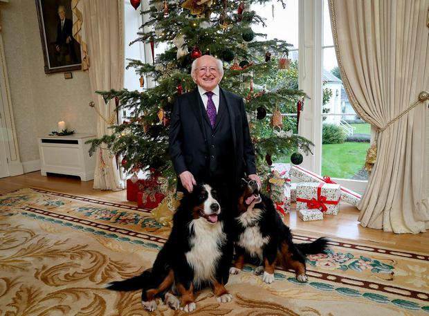 Michael D Higgins with his dogs Bród and the late Síoda