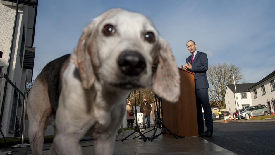 Tipper stole the show at a Cork press conference with the Taoiseach