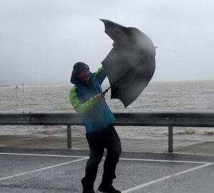 Gusts from Storm Bella. Photo: Paul Mealey.