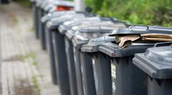 Going to waste: Bin contents will be analysed by cameras fitted to trucks and you can be fined for contaminating your bin