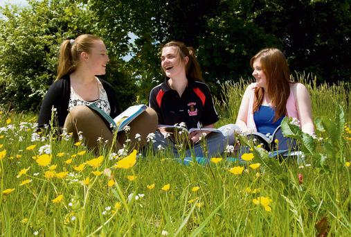 EXAM WEATHER: Castleisland Community College students Niamh O'Connell, Aoife Nolan and Chloe Kelliher doing some last-minute study in the glorious sunshine.