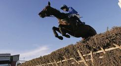 Ruby Walsh on Hurricane Fly at last year's Leopardstown Christmas Racing Festival. Photo: Sportsfile