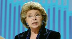 European Commission vice-president Viviane Reding has warned: 'You cannot have a single market with holes in it.'