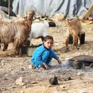 Syrian refugees in informal settlement camps on the Syrian-Lebanese border. Photography: Sasko Lazarov/Photocall Ireland