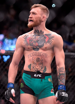 'It's probably best that not all sports stars are like McGregor and that all sports are not like MMA' Photo: Ramsey Cardy/Sportsfile