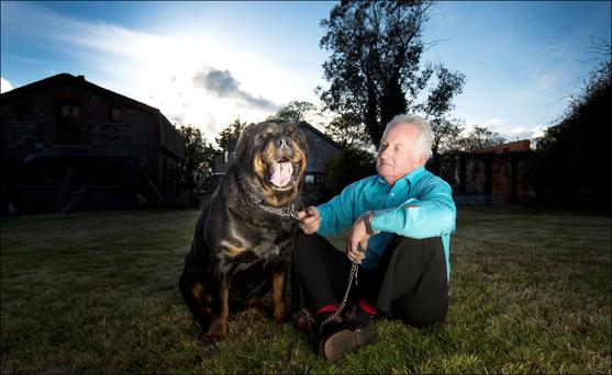 Husband: Graham Turley with his dog Tarbh at his home in north Dublin. Photo: David Conachy
