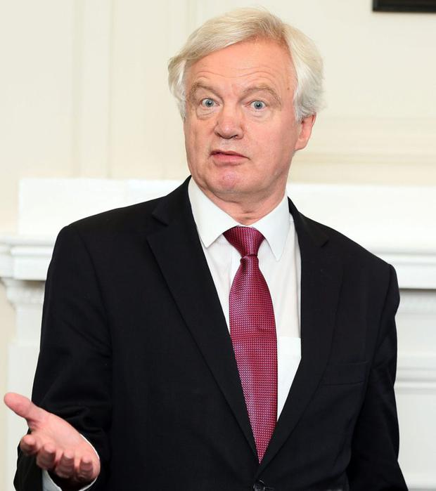 A right mess: Tory Brexit minister David Davis