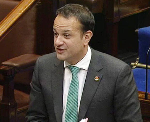 Taoiseach Leo Varadkar's shamrock poppy in the Dail last week