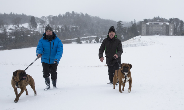 Paddy Carr, who managed Ballymun Kickhams to the Dublin county football final last year, and Eilis Flood take the dogs for a walk in Slane during last week's icy blast. Photo: David Conachy