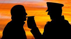 Political parties often unite against the scourge of drink-related road deaths