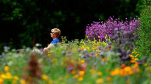 Pause for thought: A woman sits among the flowers in the Botanic Gardens in Dublin as the good weather continues. Photo: Brian Lawless/PA