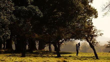 How can you enjoy the Phoenix Park when there is nowhere to use the toilet? Photo: Brian Lawless/PA