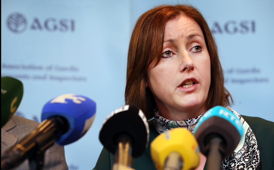 AGSI president Antoinette Cunningham has been one of the central figures in the Garda dispute over pay. Photo: Steve Humphreys