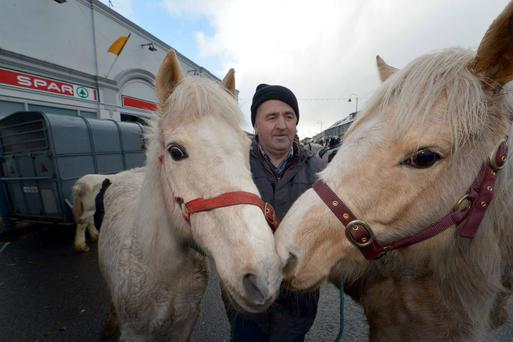 Michael Moloney pictured at last year's January Listowel Horse Fair in Listowel, Co Kerry. Photo: Domnick Walsh /Eye Focus