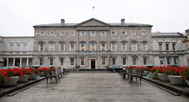 Leinster House: Can the natural world tell us anything about how politics works in this country?