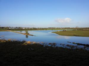 Ballinrobe field under water. Photo: Adrian Dervin, sent in to contact@independent.ie