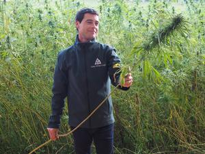 Celtic Wind CEO, Paul McCourt, showing off the the hemp crop at the company's open day