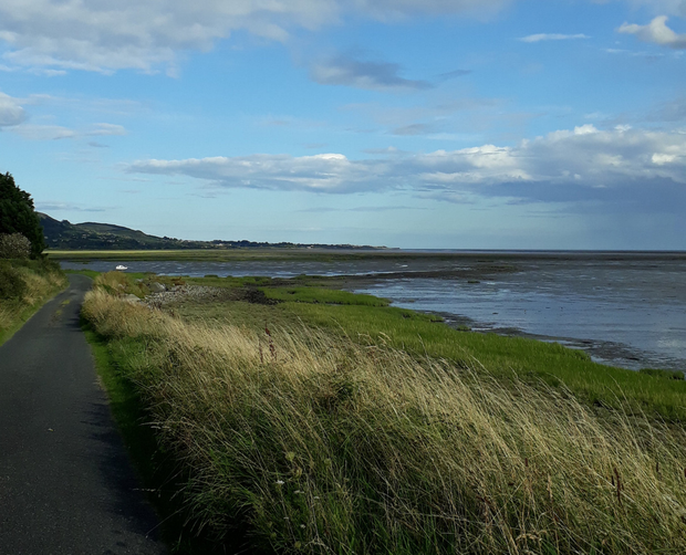 The beach at Bellurgan was cleaned as part of Peninsula Marine Litter Project