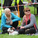 Bella with Michelle McArdle and Siobhan Cassidy at the Dundalk Dog Rescue Paws in the Park in Ice House Hill