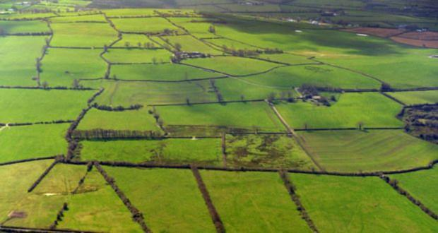 Land prices in Louth have risen sharply