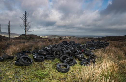 There was widespread condemnation of the dumping of more than 1,000 tyres on the Cooley mountains. Image: Argus