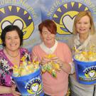 Maura Finnegan, Una Duffy and Anne Crombie with the hand knitted chicks on sale by the North Louth Hospice