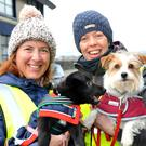 Pamela Shevlin with 'Scrappy' and Áine McKenna with 'Millie' at the Dundalk Dog Rescue 'Carlingford Greeway Walk' fundraiser. Pictures: Ken Finegan