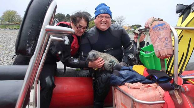 Patricia Finlay and Seamus Campbell with the rescued seal