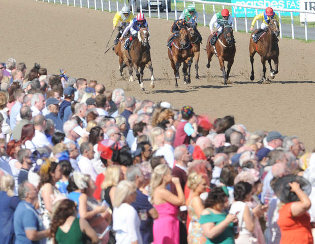 Dundalk Stadium will be hoping for fine weather and big crowds on July 12th