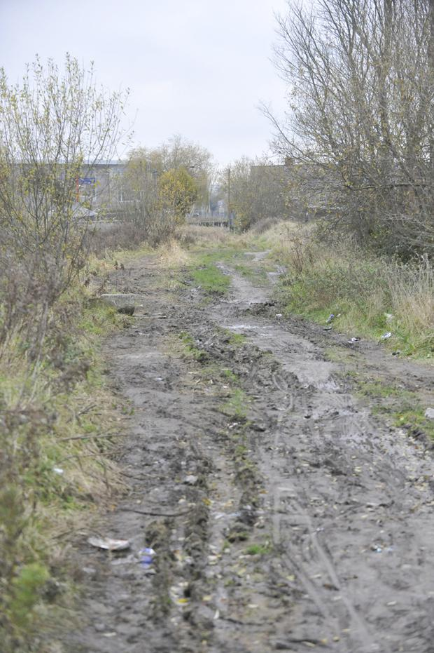 The proposed site of the walkway from to the Avenue Road. Photo: Aidan Dullaghan/Newspics