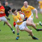 Stephen Kilcoyne, Sean O'Mahony's gets away from Anton Watters, Cooley