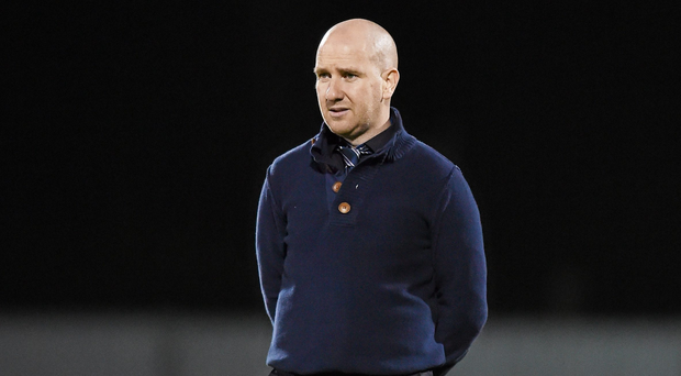 Wexford Youths manager Shane Keegan. Photo: Matt Browne / Sportsfile