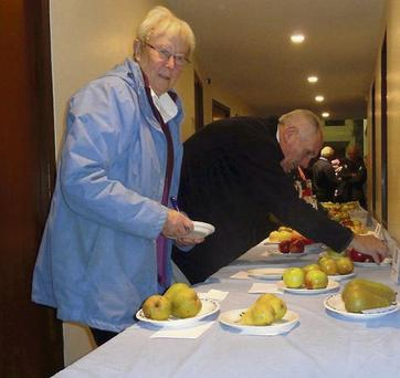 Show Secretary Ruth Handy and exhibitor David Warnock getting organised for the Delgany Society's Fruit Show. Picture: Billy Markham