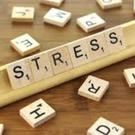 Stress in itself is not bad, it's our own response to it, and how we react and deal with stress that is causing the problem