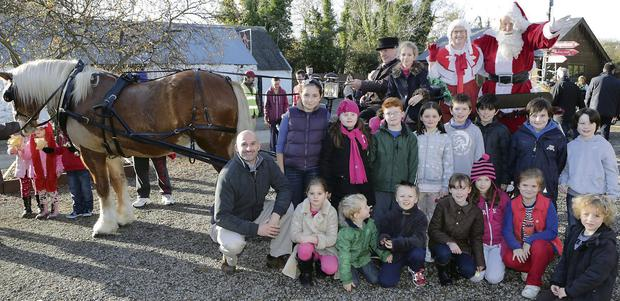 Santa arrives by pony and trap at Glenroe Farm, with : Ava-Paris Neiland and her friends (L-R) Back: Tonie Furlong, Isabelle Grant, Rhys Teeling, Anna Mooney, Niall Somers, Michael Mooney, Calum O'Reilly, Matt Harmon. Front: David Neiland, Mya Neiland, Ewan Byrne, Daniel Walton, Lucy Doherty, Ciara Nolan, Isabelle Lucas, Cillian Byrne