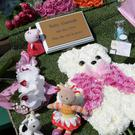 Flowers and teddies left on baby Alannah's grave