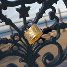 A lock placed on the seatbacks on Bray seafront